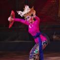 77創作舞踊「踊るしま」