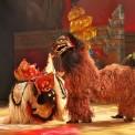 99沖縄とバリの獅子舞