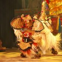 94沖縄とバリの獅子舞